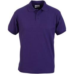 Vêtements Homme Polos manches courtes Absolute Apparel  Violet