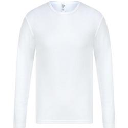 Vêtements Homme T-shirts manches longues Absolute Apparel  Blanc