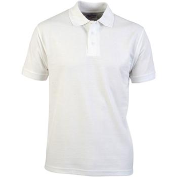Vêtements Homme Polos manches courtes Absolute Apparel  Blanc