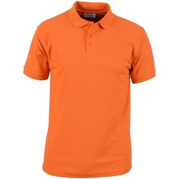 Vêtements Homme Polos manches courtes Absolute Apparel  Orange