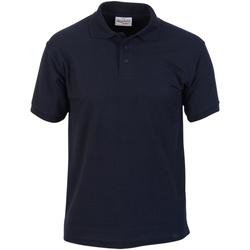 Vêtements Homme Polos manches courtes Absolute Apparel  Bleu marine