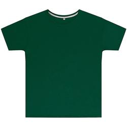 Vêtements Enfant T-shirts manches courtes Sg SGTEEK Vert bouteille