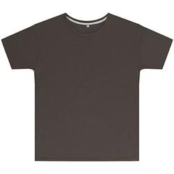 Vêtements Enfant T-shirts manches courtes Sg SGTEEK Gris foncé