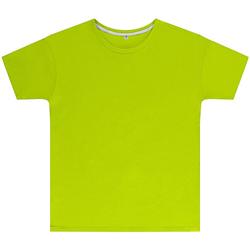 Vêtements Enfant T-shirts manches courtes Sg SGTEEK Vert fluo