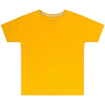 Vêtements Enfant T-shirts manches courtes Sg SGTEEK Jaune