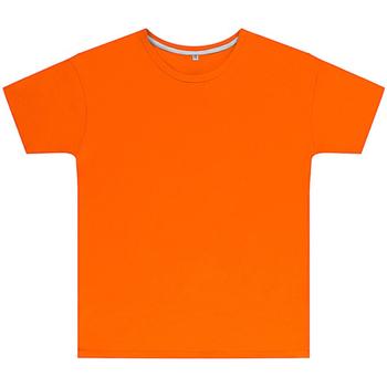 Vêtements Enfant T-shirts manches courtes Sg SGTEEK Orange