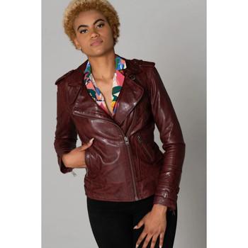 Vêtements Femme Vestes en cuir / synthétiques Cityzen APRILIA 2 OXBLOOD Oxblood