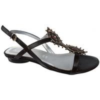 Chaussures Femme Sandales et Nu-pieds Keys InsérezGemméSandales Marron