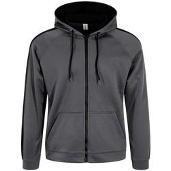 Vêtements Homme Sweats Awdis JH066 Gris/noir