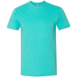 Vêtements Homme T-shirts manches courtes Next Level NX6210 Bleu clair