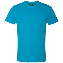 Vêtements Homme T-shirts manches courtes Next Level NX6210 Turquoise