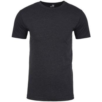 Vêtements Homme T-shirts manches courtes Next Level NX6210 Anthracite