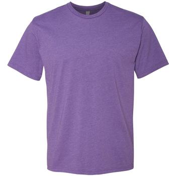 Vêtements Homme T-shirts manches courtes Next Level NX6210 Violet