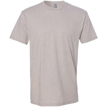 Vêtements Homme T-shirts manches courtes Next Level NX6210 Gris clair
