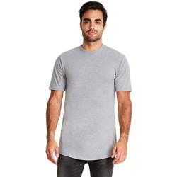 Vêtements Homme T-shirts manches courtes Next Level NX3602 Gris chiné