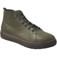 Chaussures Femme Boots Andrea Conti 406002 Kaki cuir