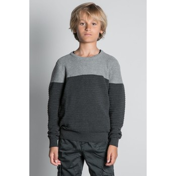 Vêtements Garçon Pulls Deeluxe Pull BROOK Grey