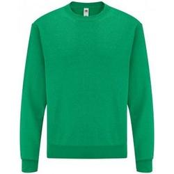 Vêtements Homme Sweats Fruit Of The Loom SS9 Vert chiné