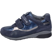 Chaussures Fille Baskets mode Miss Sixty sneakers daim bleu