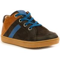 Chaussures Garçon Baskets montantes Aster Wou MARRON FONCE