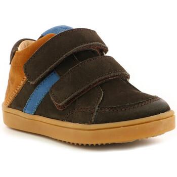 Chaussures Garçon Baskets montantes Aster Woukro MARRON FONCE