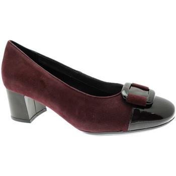 Chaussures Femme Escarpins Soffice Sogno SOSO20780bor nero
