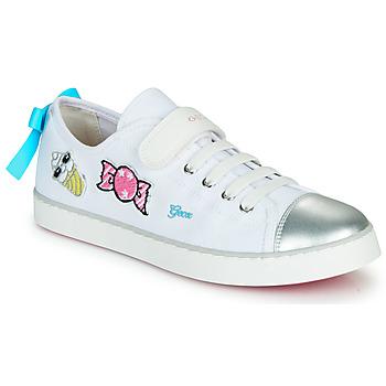 Chaussures Fille Baskets basses Geox JR CIAK FILLE Blanc / Argenté