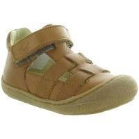 Chaussures Enfant Sandales et Nu-pieds Naturino & Falcotto BEDE BOY Marron