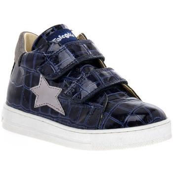 Chaussures Fille Baskets basses Naturino FALCOTTO 2C06 SASHA BLEU Blu