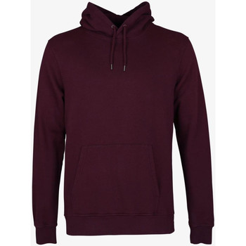 Vêtements Homme Sweats Colorful Standard CLASSIC ORGANIC HOOD oxblood-red-rosso