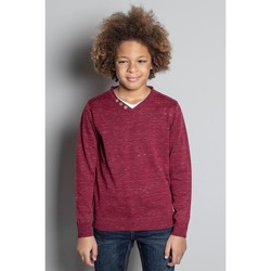 Vêtements Garçon Pulls Deeluxe Pull SINGLE Burgundy Mel