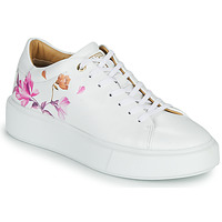 Chaussures Femme Baskets basses Ted Baker PIIXIER White