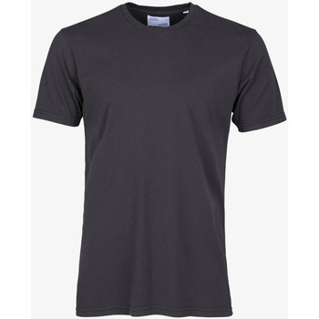 Vêtements Homme T-shirts manches courtes Colorful Standard CLASSIC ORGANIC TEE lava-grey-grigio