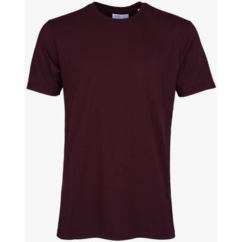 Vêtements Homme T-shirts manches courtes Colorful Standard CLASSIC ORGANIC TEE oxblood-red-rosso