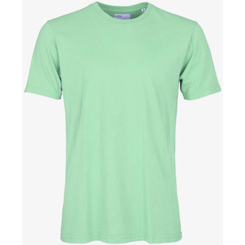 Vêtements Homme T-shirts manches courtes Colorful Standard CLASSIC ORGANIC TEE faded-mint