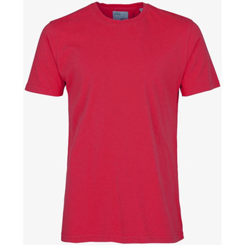 Vêtements Homme T-shirts manches courtes Colorful Standard CLASSIC ORGANIC TEE scarlet-red