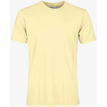 Vêtements Homme T-shirts manches courtes Colorful Standard CLASSIC ORGANIC TEE soft-yellow