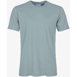 Vêtements Homme T-shirts manches courtes Colorful Standard CLASSIC ORGANIC TEE steel-blue