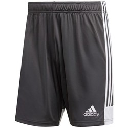 Vêtements Homme Pantacourts adidas Originals Tastigo 19 Gris