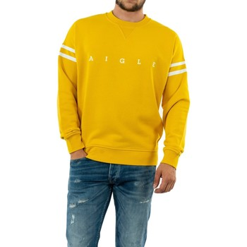 Vêtements Homme Sweats Aigle wandri lemony jaune