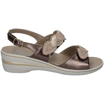 Chaussures Femme Sandales et Nu-pieds Melluso HO2965 TITANE
