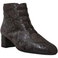 Chaussures Femme Bottines Brenda Zaro F1780 Marron