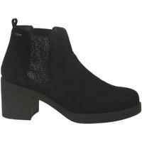 Chaussures Femme Bottines IgI&CO DAI'61523 nero