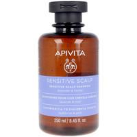 Beauté Shampooings Apivita Sensitive Scalp Shampoo Lavender & Honey  250 ml