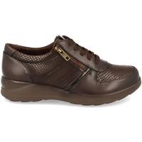 Chaussures Femme Derbies Virucci VR0-128 Marron