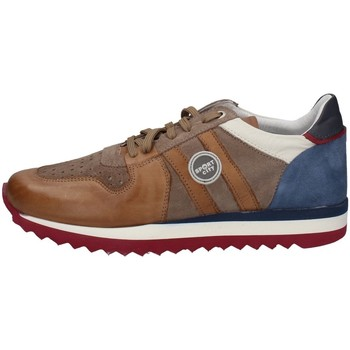 Chaussures Homme Baskets basses Melluso XU90129 MOUTARDE