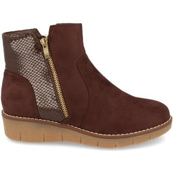 Chaussures Femme Bottines Clowse 9B1111 Marron