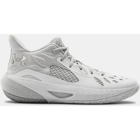 Chaussures Basketball Under Armour Chaussures  HOVR™ Havoc 3 blanc/argenté/gris chiné