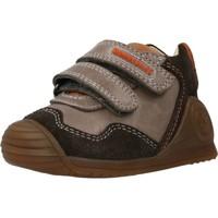 Chaussures Garçon Bottes Biomecanics 201121 Marron