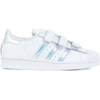 Chaussures Enfant Baskets basses adidas Originals Superstar CF C Blanc